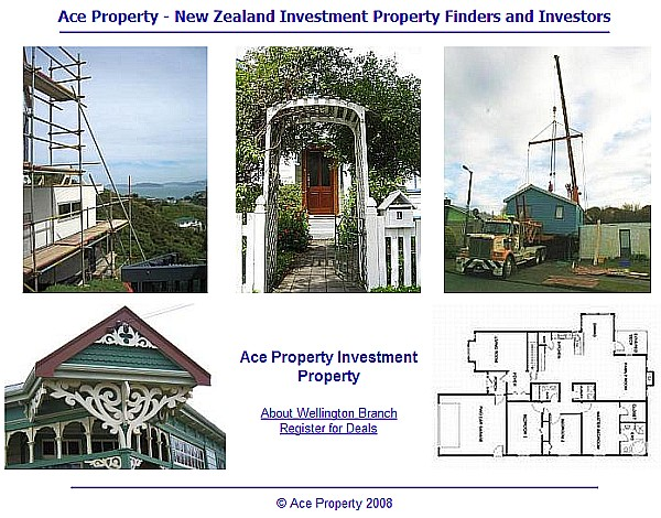 snapshot of ace property site