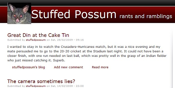 snapshot of stuffed possum site